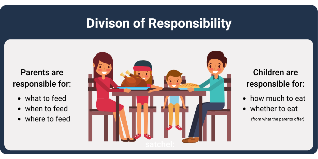 Satters Division of Responsibility